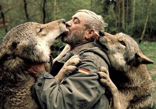 animal human safe